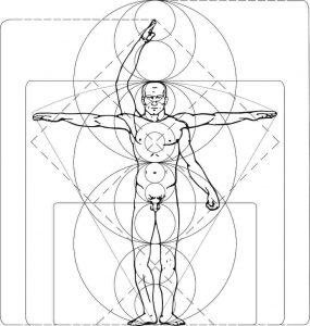 Planimetría Anatómica